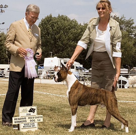 Boxer Club of Western Ontario Specialy