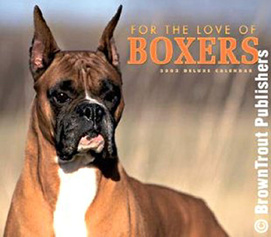 For The Love of Boxers - 2006 cover